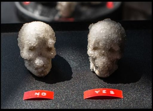 its all no yes skulls